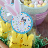 Easter Tags with bunny ears (free printable)