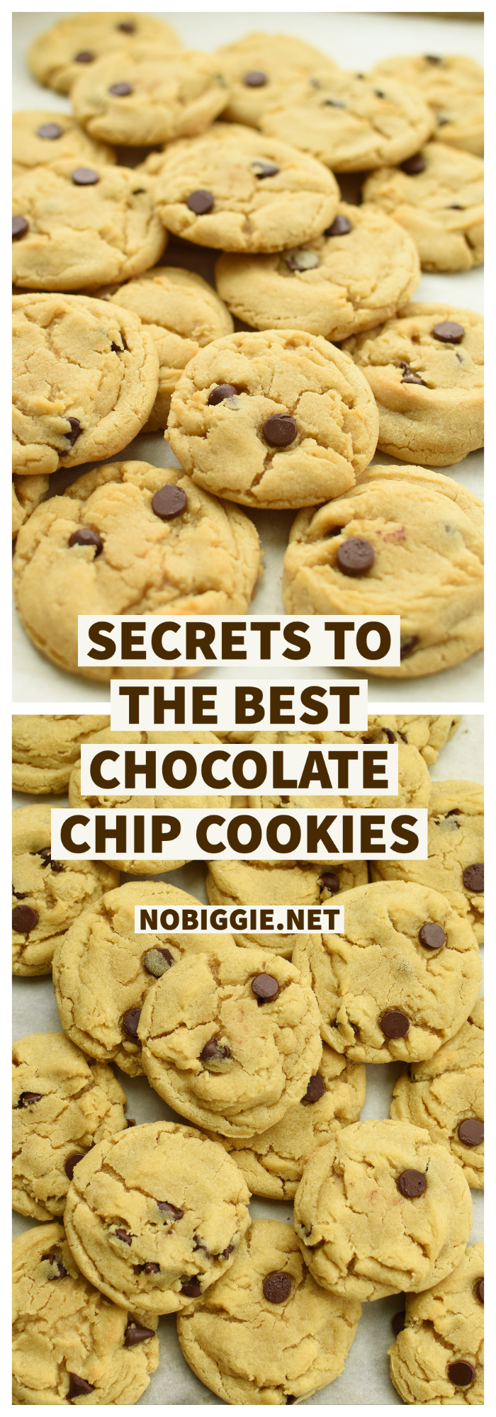 chocolate chip cookies made with butter flavored crisco   NoBiggie.net