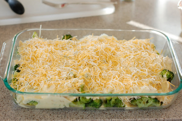 Chicken broccoli casserole right before baking