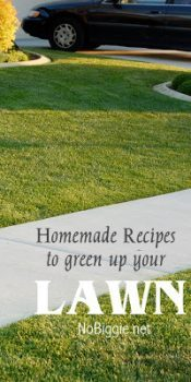 Homemade Recipes To Green Up Your Lawn