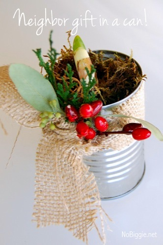 simple neighbor gift | a flowering bulb in a tin can | NoBiggie.net