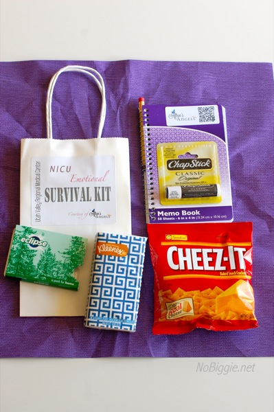 NICU emotional survival kit | NoBiggie.net