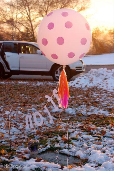 pink balloons NoBiggie.net