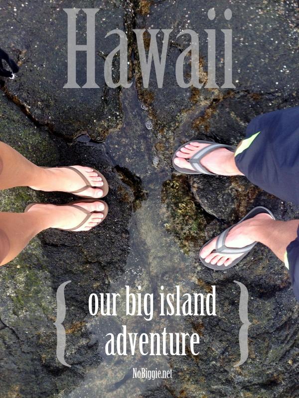 our-big-island-Hawaiian-adventure-NoBiggie.net_