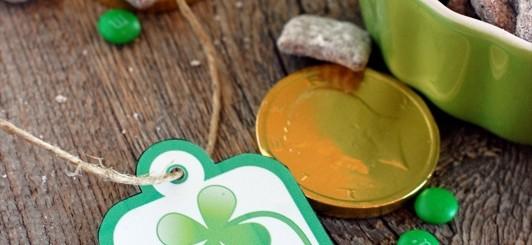 St. Patrick's Day printables - NoBiggie.net