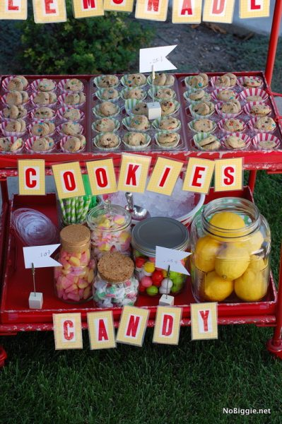 DIY gourmet lemonade stand | ideas on NoBiggie.net