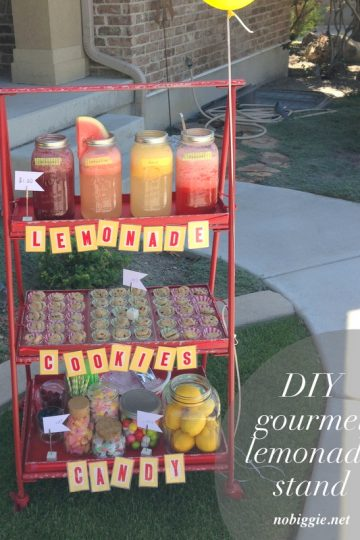 Gourmet Lemonade Stand ideas