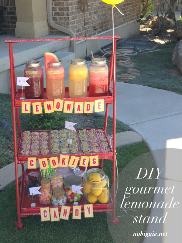 DIY gourmet lemonade stand  ideas on NoBiggie.net