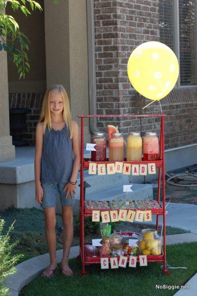 DIY gourmet lemonade stand - ideas on NoBiggie.net
