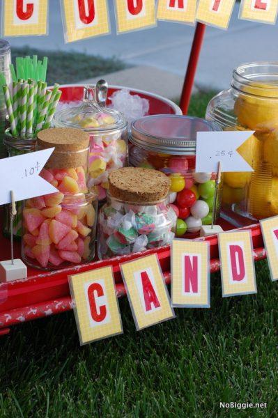 DIY gourmet lemonade stand ideas on NoBiggie.net