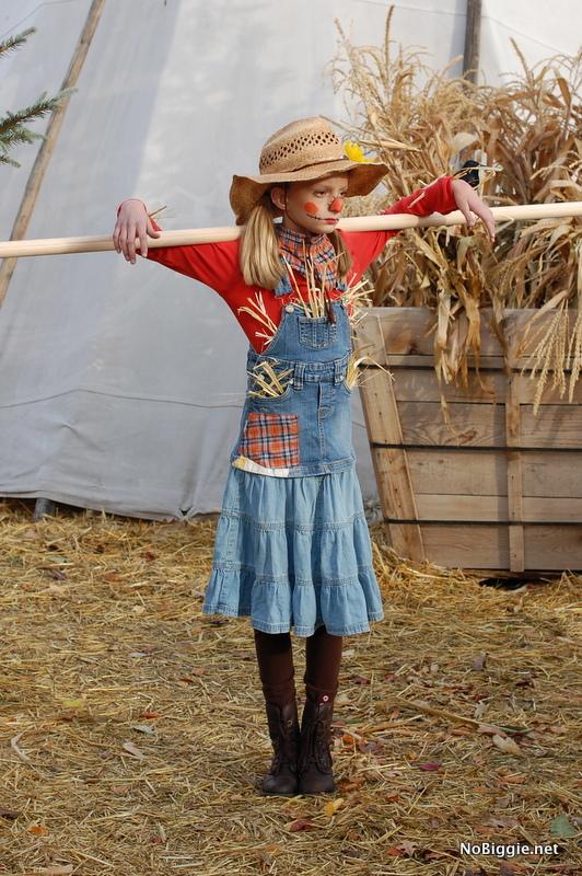 scarecrow Halloween Costume - NoBiggie.net