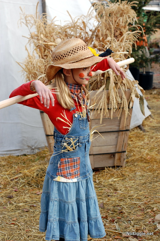 scarecrow costume last minute - NoBiggie.net
