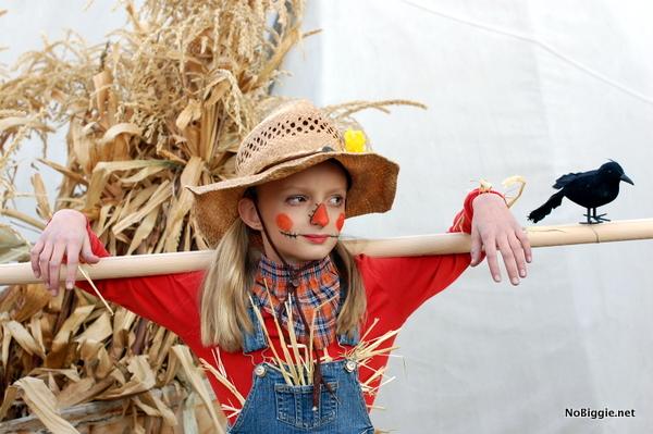 scarecrow costume with crow - NoBiggie.net
