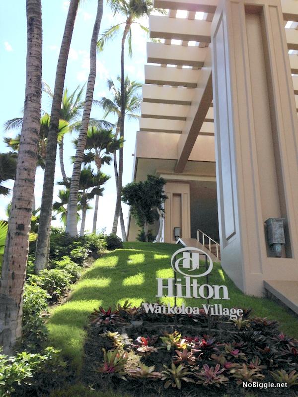 Hilton Waikoloa - NoBiggie.net