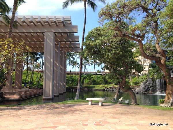 Hilton in the big Island - NoBiggie.net