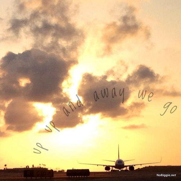 airplane silhouette - NoBiggie.net