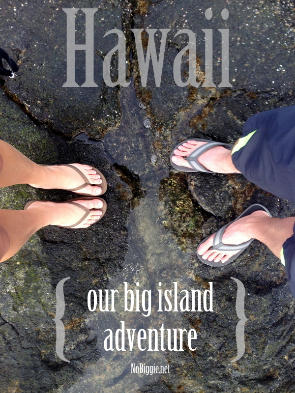 our big island Hawaiian adventure - NoBiggie.net