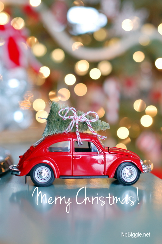 red vw beetle car with tiny bottle brush tree - love this - Nobiggie.net
