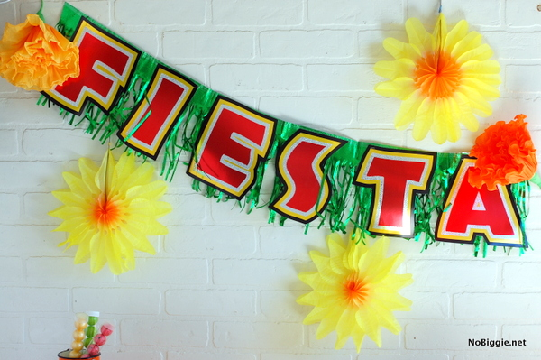 cinco de mayo party ideas | NoBiggie.net