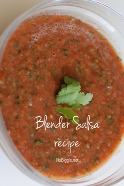 http://www.nobiggie.net/wp-content/uploads/2014/04/the-best-homemade-salsa-recipe-on-NoBiggie.net_-e1398236614265.jpg