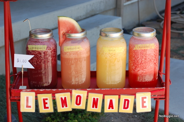 Gourmet Lemonade Stand Ideas | NoBiggie.net