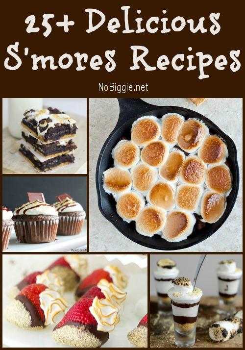 25+ S'mores Recipes | NoBiggie.net