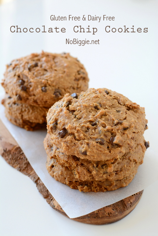 Gluten Free and Dairy Free Oatmeal Chocolate Chip Cookie recipe | NoBiggie.net - so soft and chewy!