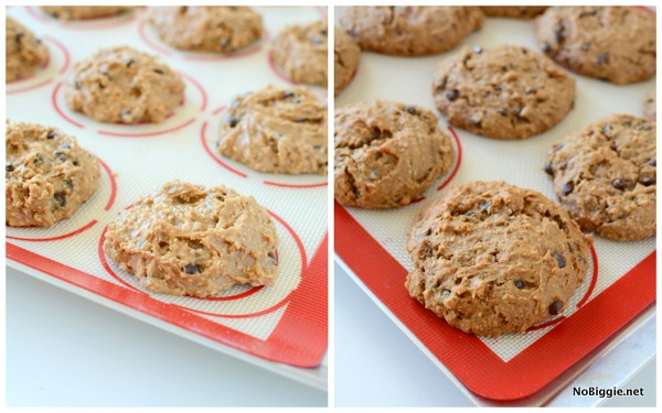 gluten free and dairy free oatmeal chocolate chip cookies - so soft and so good NoBiggie.net