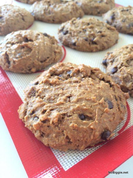gluten free dairy free chocolate chip cookie recipe | NoBiggie.net