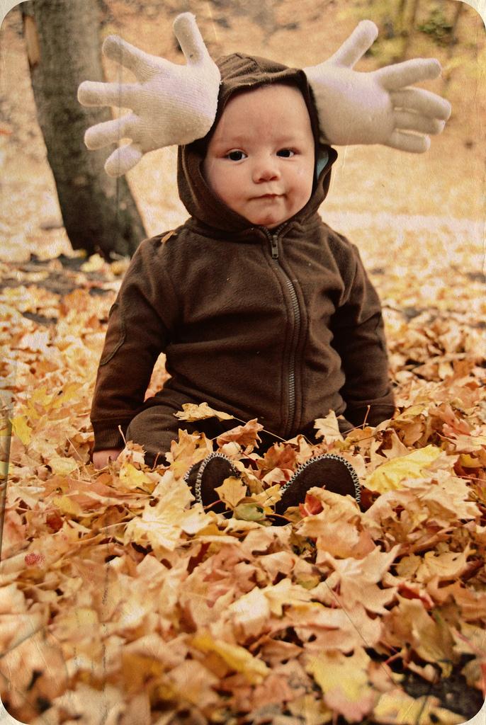 Moose costume | 25+ creative DIY costumes for boys