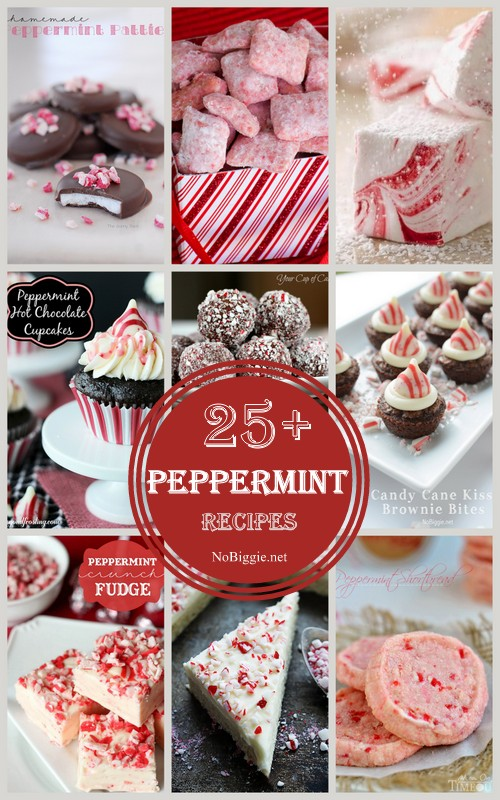 25+ Peppermint recipes | NoBiggie.net