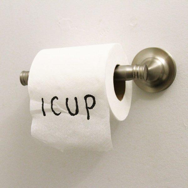 April Fools Toilet Paper | 25+ April Fools Day Ideas