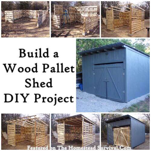 Build an Amazing Wood Pallet Shed DIY Project | 25+ garden pallet projects