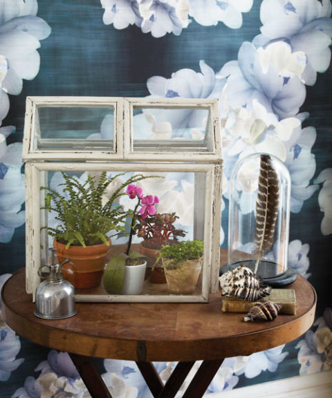 How to Make a Terrarium | 25+ ways to celebrate Earth Day