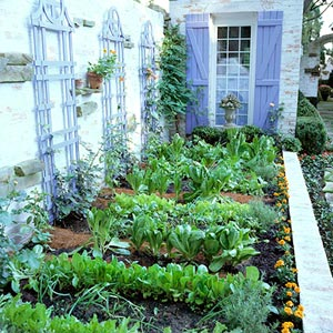 How to plant a vegetable garden | 25+ ways to celebrate Earth Day