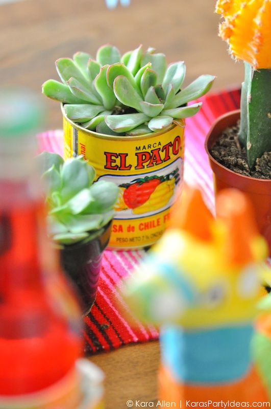 succulent planter in can | Cinco De Mayo Fiesta