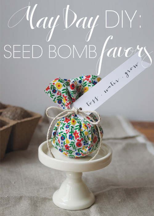 DIY May Day Seed Bomb favors | 25+ May Day ideas