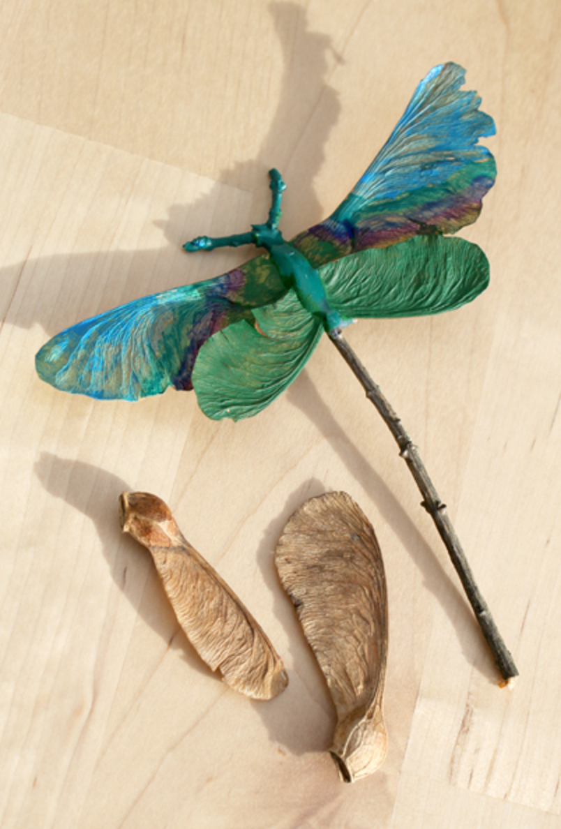 make a dragon fly out of seeds and twigs | 25+ Earth Day ideas