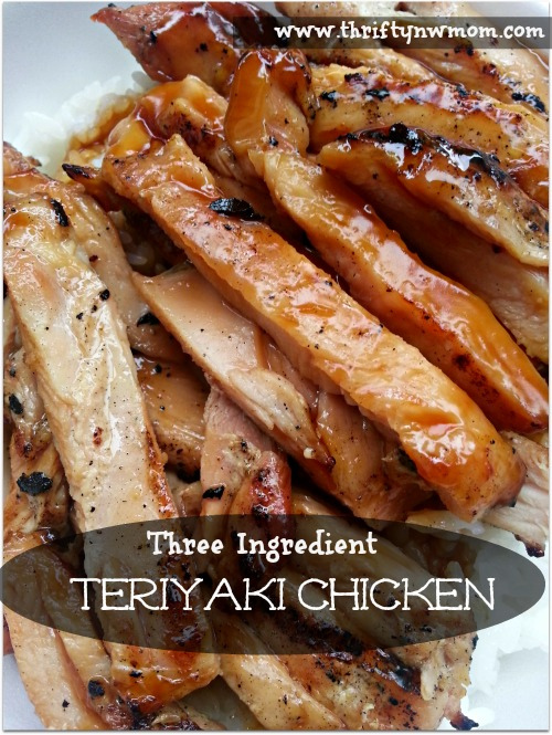 Slow Cooker Teriyaki Chicken | 25+ Three Ingredient Recipes