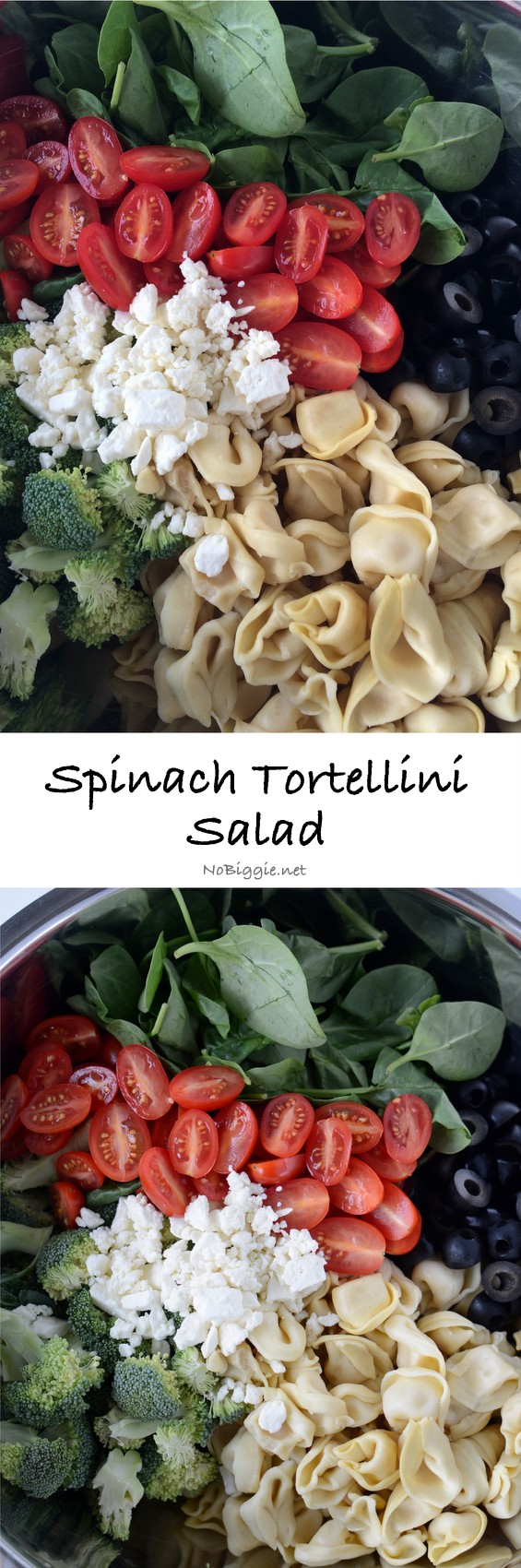 Spinach Tortellini Salad -  It's perfect during BBQ Season, picnics and big family gatherings. #spinachtortellinisalad #spinachtortellini #spinach #tortellini #saladrecips