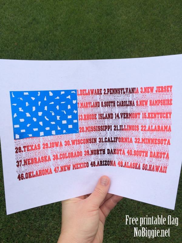 picture regarding United States Flag Printable called Exclusive United Suggests Flag printable NoBiggie