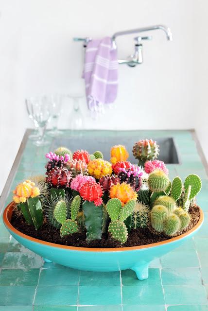 Cactus indoor planter | 25+ Cactus crafts and DIY