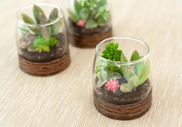 DIY Wood Base Terrariums | 25+ Cactus crafts and DIY