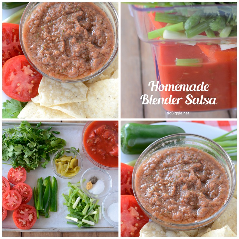 Homemade Blender Salsa | NoBiggie.net