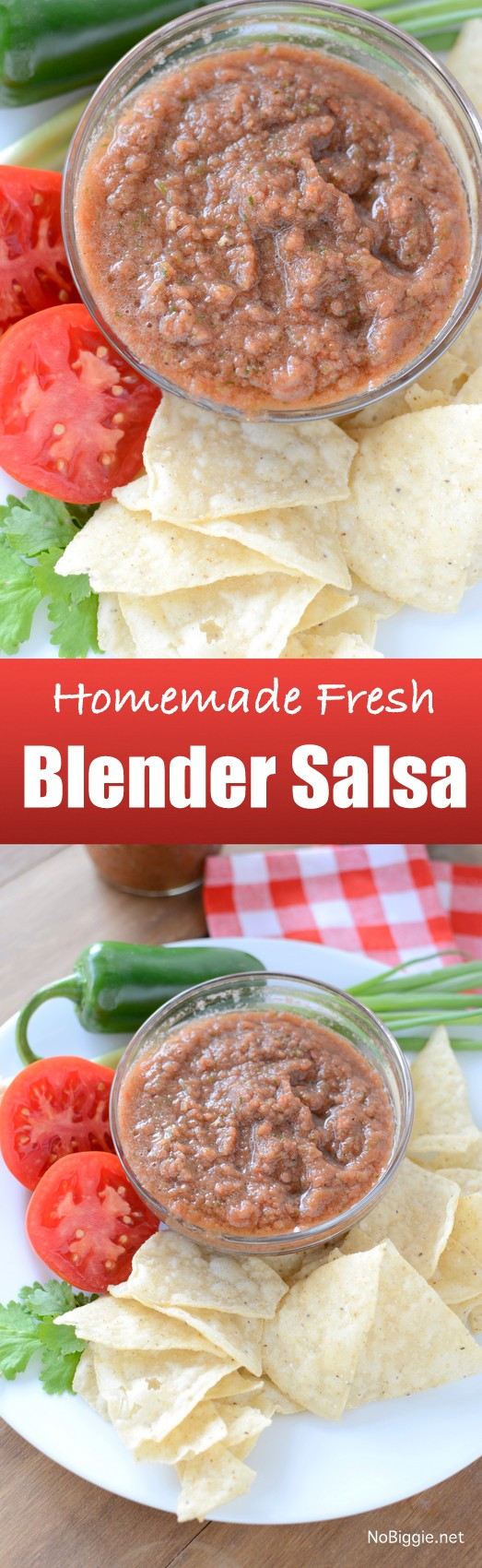 Homemade Fresh Blender Salsa | NoBiggie.net