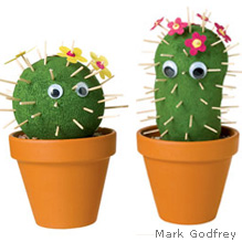 Make A Cactus Garden with Socks | 25+ Cactus crafts and DIY