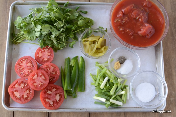 ingredients for Homemade Fresh Blender Salsa | NoBiggie.net