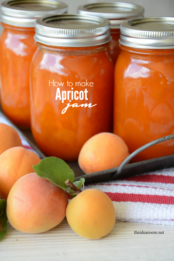 15 Great Canning Recipes to Preserve Your Fruits, Vegetables, and Meats