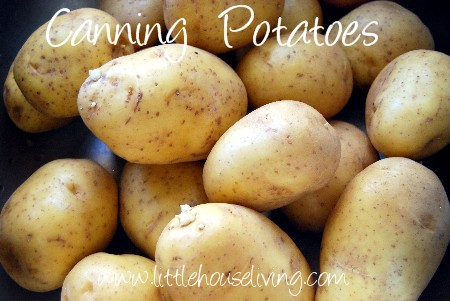 Canning Potatoes | 25+ Canning Recipes