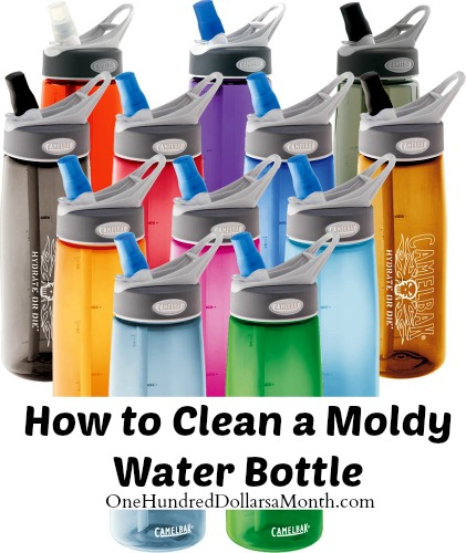 How to Clean a Moldy Water Bottle | 25+ Cleaning Hacks